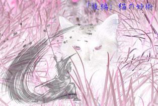 【後編】猫の妙術(ねこのみょうじゅつ)とは?老猫が語る剣術の極意とは?
