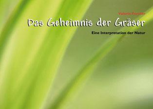 Valerie Forster, Bücher, Books on Demand, Cover, Das Geheimnis der Gräser