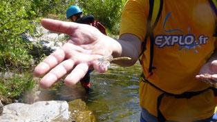 Une pédagogie tournée vers la nature, la culture  et le sport
