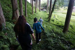 神社から杉並木の間を下ります。