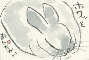 ウサギ「ホワッと」