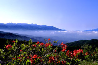 高原の朝 (127cmx190cm)