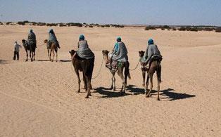 Grupo DRS en el Sáhara