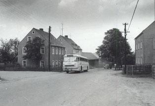 Bild: Panzerlinde Wünschendorf