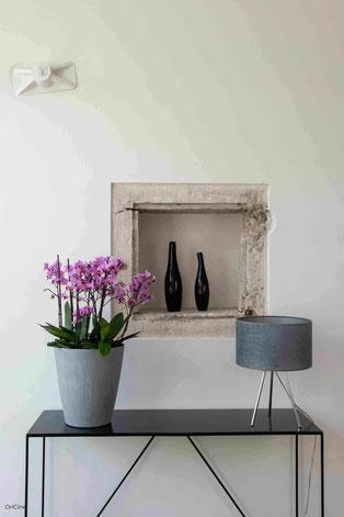 arrosage orchidée connecté avec OriCine® en situation dans un maison 1