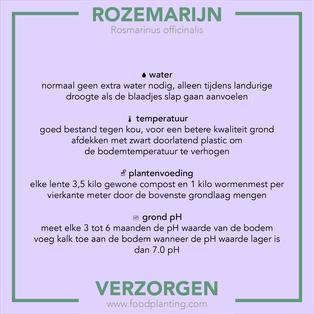 rozemarijn verzorgen