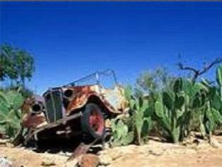 Coincé dans les cactus de votre formation de conduite ?