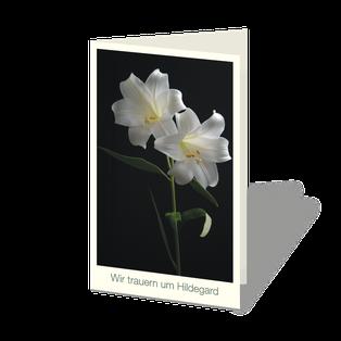 """Trauerkarte mit weißer Lilie vor dunklem Hintergrund. Zwei Lilienblüten, darunter der Text:""""Wir trauern um ...""""."""