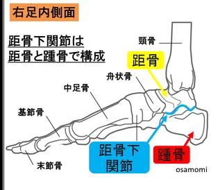 踵痛 距骨下関節 昭島市のオサモミ整体院。