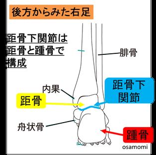 踵痛の改善 昭島市のオサモミ整体院。拝島駅から無料送迎サービス。