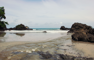 Nearby National Park Manuel Antonio