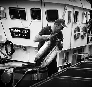 Pescador de santoña