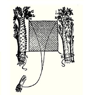 A flat net across a cock road. Illustration from Richard Blome 1686 'The Gentlemans Recreation'
