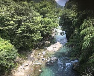 自然いっぱい郡上八幡清流吉田川