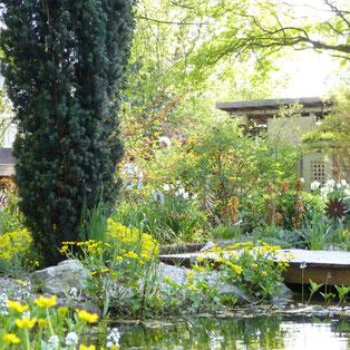 Schaugarten der Staudengärtnerei Extragrün
