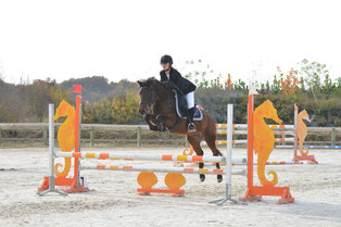 Brock Song n Dance, poney 2, Milsey Jump Bonneval