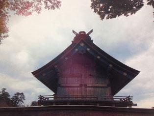 曇り空の中、出雲大社が紫色に映えた瞬間 提供:佐々木英和准教授