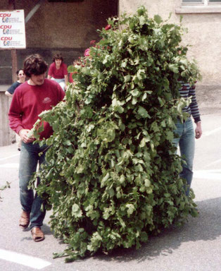 """Pfingstlümmel 1983"""