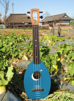 The Magic Fluke Ukulele Flea M-40 Camp