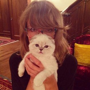 Cats Taylor Swift Switzerland