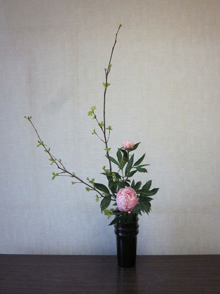 2013.6.7 直立型    by Atsukoさん