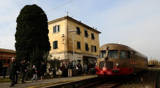 Foto tratta dall'articolo (autore Michele Falorni/Silvi)
