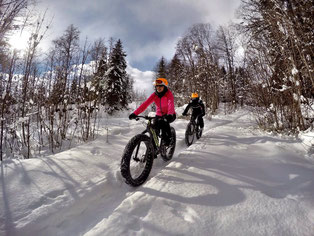 Alpine Fatbike Winter Trail