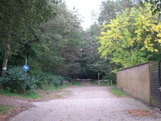 Frreier Platz im Stadtwald Verden
