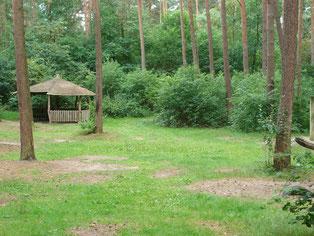 Waldspielplatz in Dörverden