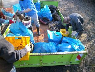 Müllsortierung nach vielen Stunden Einsatz am und im Gründleinsbach bei Hallstadt, Bild: Judith Fürst