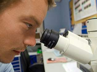 Markstarの豆知識 iPS細胞 リハビリ関連情報1