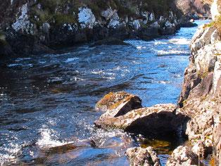 eine Geo-Studien suchte nach seltenen Steinen