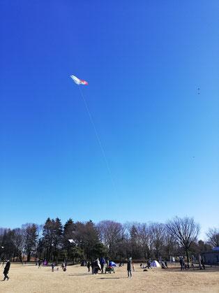 音叉ヒーリング講座通信講座・オンライン講座の日本音叉ヒーリング研究会onsalaboの風の時代