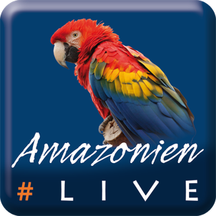 #AmazonienLive Medienpartner