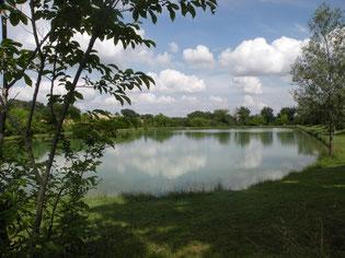 Le lac de Pauilhac