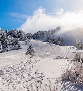 vercors station neige