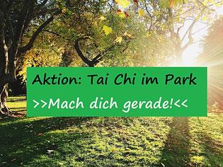 Tai Chi im Park in Neuss
