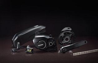 Der Shimano Steps E8000 Antrieb