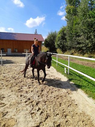 Pferdetraining, Dorfer Hannah, Beritt, Korrektur Pferde, Behandlung von Pferdetaumatas, Pferdeausbildung,  Freiheitsdressur