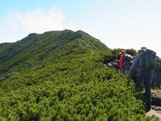 幌尻岳山頂への稜線歩きです。最高‼
