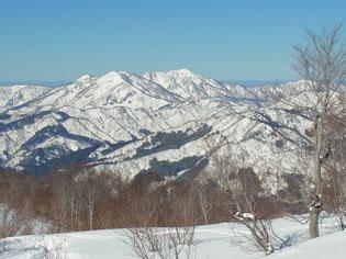 木々もまばらになると西方に越前甲~加賀大日山が
