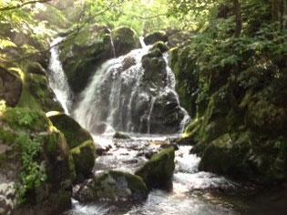 清流の滝が続く