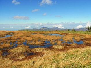 山頂大平原と池塘群