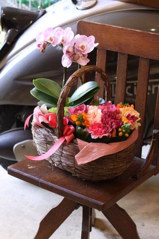 胡蝶蘭の鉢と生花のコラボアレンジメント