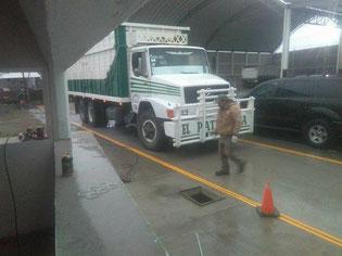 báscula camionera de fosa