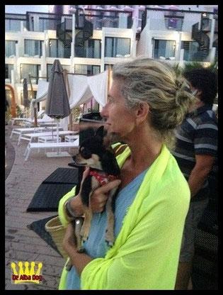 Foto perro raza chihuahua adulto macho de pelo corto de color negro-fuego de los criadores de chihuahuas con afijo De Alba Dog de Valencia, Comunidad Valenciana, España, venta de chihuahuas, cachorros chihuahua de pelo corto y largo en venta con pedigree