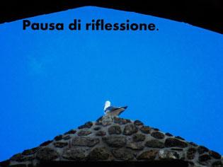 Pausa, di Eleonora Cod.13