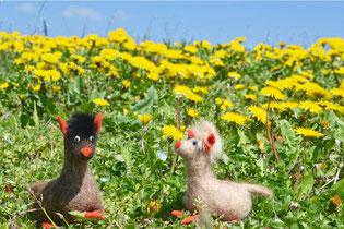 Zwei kleine Alpakas aus weißen und braunem Filz auf einer Blumenwiese