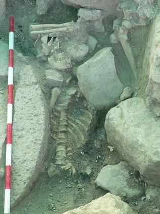 Gué Jacob - Squelette d'un templier. Temple de Paris