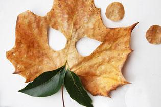 葉っぱ同士はおうちにあるホチキスやボンドなどでとめます。どんな鬼になるかは想像力次第♪